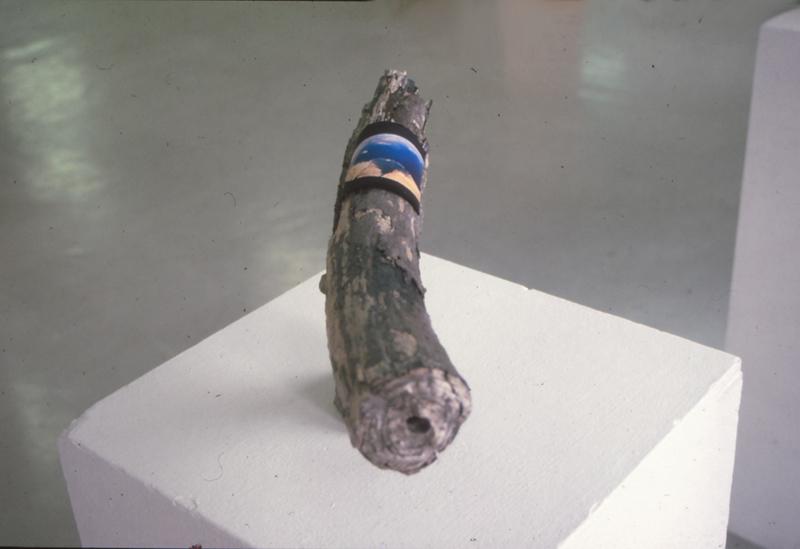 Mammoettand (Martin Sjardijn)