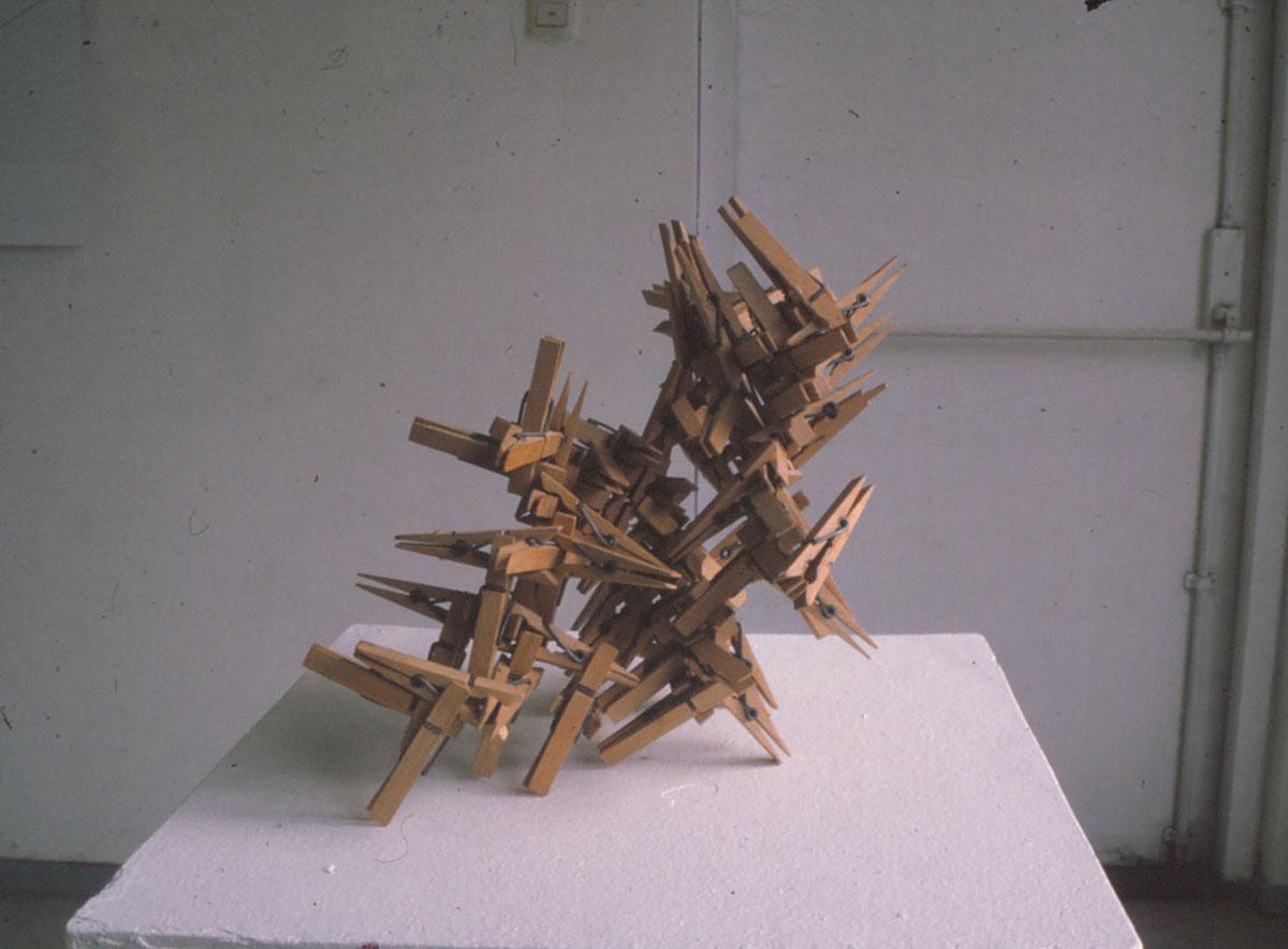Wasknijpers (Martin Sjardijn)